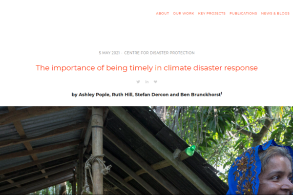 Climate Disaster Protection Blog Screenshot with title